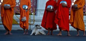 thai monks afp 840